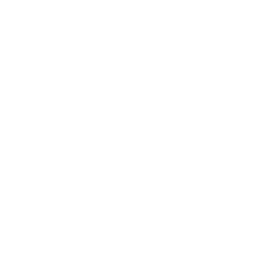 Escuela personalizada
